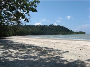Tanjung Leman 2
